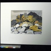 Cover image of Untitled [Rocks and Trees]