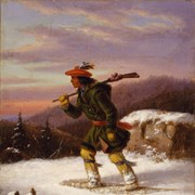 Cover image of Tracking the Moose