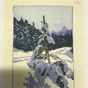 Cover image of Winter Road