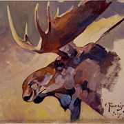 Cover image of Moose Head