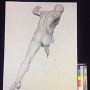 Cover image of Untitled [Drawing of Discobolus, rear view]