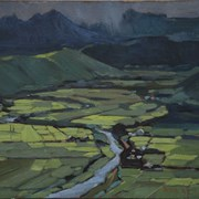 Cover image of Rice Paddies
