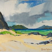 Cover image of Beach at Makapu'u Point, Hawaii