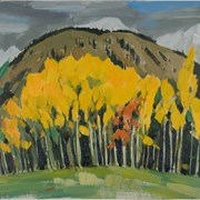 Cover image of Aspens