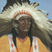 Cover image of Indian Chief