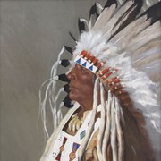 Cover image of Chief Dan Wildman